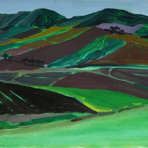 Camporeale # 2, 25 x 50 cm, acrylic on paper, 2012