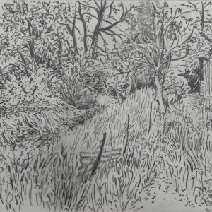 Garden # 3, 23 x 31 cm, pencil on paper, 2013