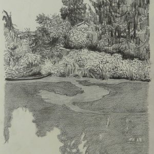 Pond # 4, 32 x 24 cm, pencil on paper, 2014