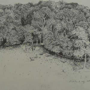 Edge of the wood # 1, 24 x 32 cm, pencil on paper, 2014