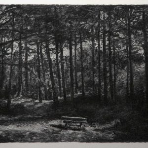 Bench # 2 (Dutch Dunes), 30 x 56 cm, charcoal on paper, 2015
