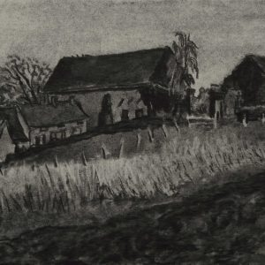 Veld, 24 x 32 cm, charcoal on paper, 2015