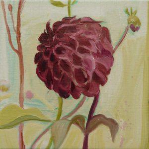 Dahlia # 9, 25 x 25 cm, oil on canvas, 2016