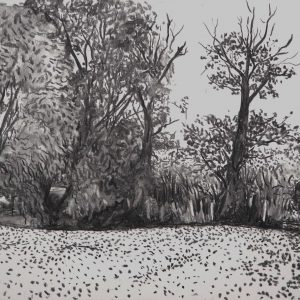 Zonder titel, 35 x 50 cm, charcoal on paper, 2017
