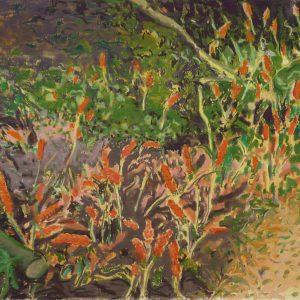 Ondergroei, 35 x 50 cm, pastel on paper, 2017