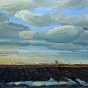 Laagland - Plas, 25,5 x 38,5 cm, oil on perspex, 2019