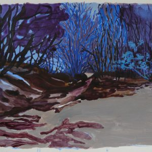 Danube swamp # 1, 32 x 48 cm, acrylic on paper, 2011