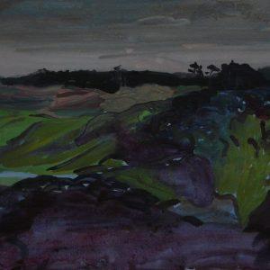 Dunes # 3 (Parnassia), 25 x 50 cm, acrylic on paper, 2012