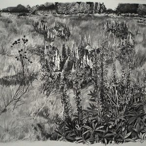 Wasteland # 2, 150 x 325 cm, charcoal on paper, 2013
