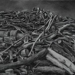 Pile, 78 x 127 cm, charcoal on paper, 2014
