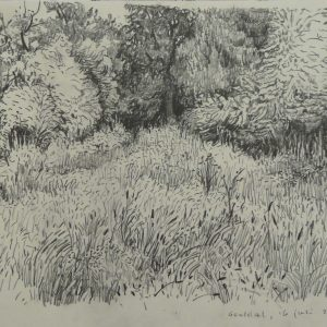 Geuldal # 1, 24 x 32 cm, pencil on paper, 2014
