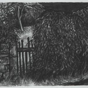 Fence, 30 x 42 cm, charcoal on paper, 2015