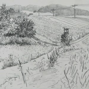 Fields, 23 x 31 cm, pencil on paper, 2015