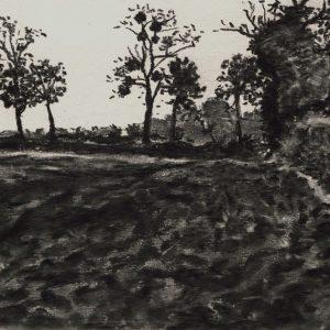 Kasteellaan, 24 x 32 cm, charcoal on paper, 2015