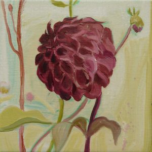 Dahlia # 9, 25 x 25 cm, oil on canvas, 2016