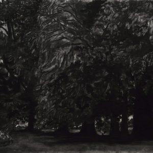 Bomen (Pruisen), 35 x 50 cm, charcoal on paper, 2016